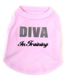 Diva in Training T-shirt, pink